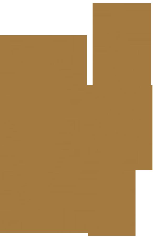 Don Salas